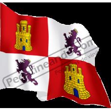 Bandera Castilla y Leon Ondeando