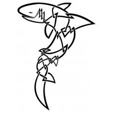 Tiburon Celta