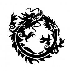 Dragon circulo